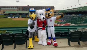 South Bend Cubs hosting Polar Plunge fundraiser to benefit Special Olympics  – 95.3 MNC News